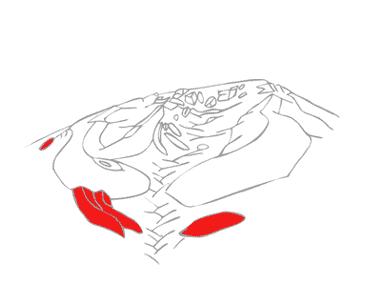 evolueps2