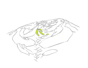 evolueps4