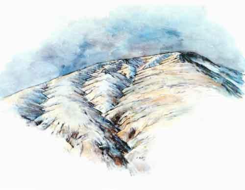 glaciar11